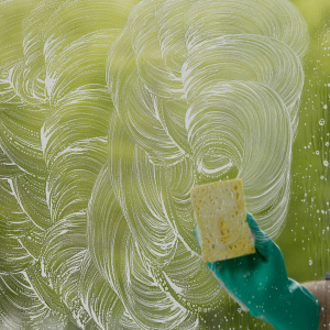 close up worker washing cleaning window